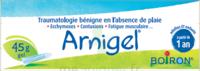Boiron Arnigel Gel T/45g à YZEURE