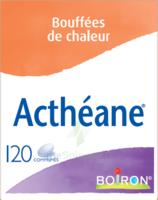 Boiron Acthéane Comprimés B/120 à YZEURE